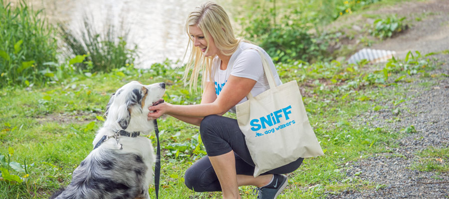 Jobs With SNIFF Dog Walkers