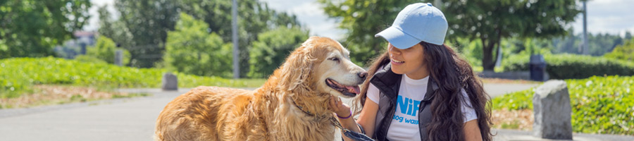 Dog Walking Services From SNIFF Dog Walkers
